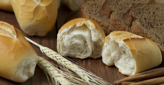 خبز الفينو ما بين الأسمر…… والأبيض…..في حقائق مهمة مع دوسات
