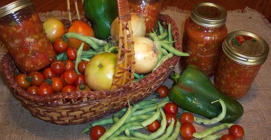 فوائد الخضروات من الحديقة المنزلية..أفضل طريق للرشاقة والصحة