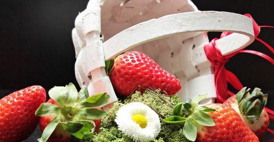 أغذية الربيع فالربيع موسم السعادة للنباتيين .
