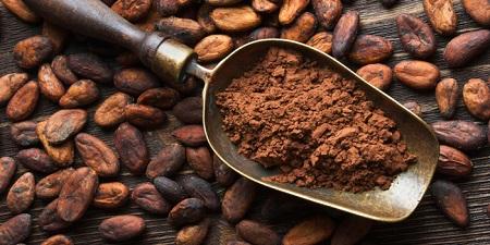 فوائد الكاكاو للصحة والجسم فالكاكاو غني بقيمةٍ غذائيّةٍ عالية ، ولكاكاو أو ما نسمِّيها الشيكولاتة
