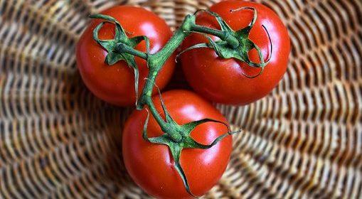 البندورة من أساسيات الحميات والبرامج الغذائية والأنظمة المتبعة لتخسيس وتخفيف الوزن لماذا؟